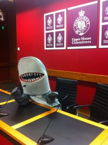 Mr Cuddle the Shark at Parliament House